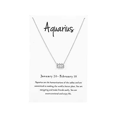 Kambear 12 Constellation Pendant Necklace Zodiac Sign Astrology Silver Tone  Chain Message Card Women Jewelry