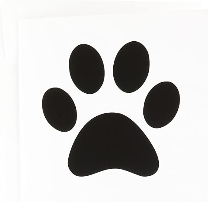 Pack 6 Illustrations Animals A5 Black and White displays