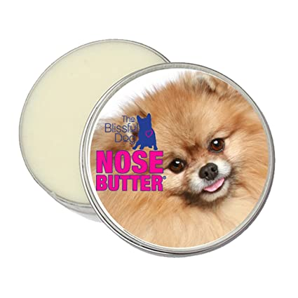 Amazoncom The Blissful Dog Pomeranian Nose Butter 1 Ounce Pet