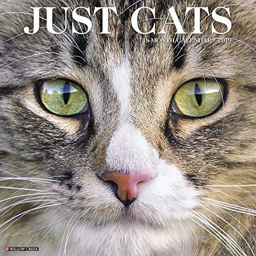 Just Cats 2019 Calendar