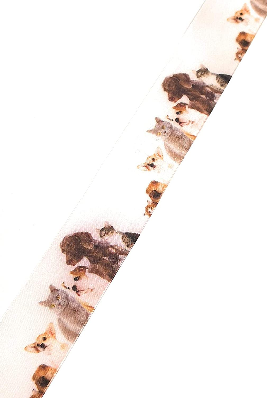X772 Schleifenband 20m x 15mm M/öhre Karotte Dekoband