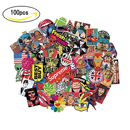 Laptop Car Motorcycle Bicycle Skateboard Luggage Graffiti Decals Bumper DIV Decoration 100 PCS Stickers for Kids Girls Teens Youths Adult(Not Random) (Div Decal)