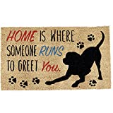 DII Natural Coir Fiber, 18x30 Entry Way Outdoor Door Mat with Non Slip...