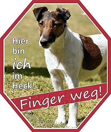 wetterfest 2 Markenfolie 22 x 18,5 Petsigns Aufkleber Foxterrier
