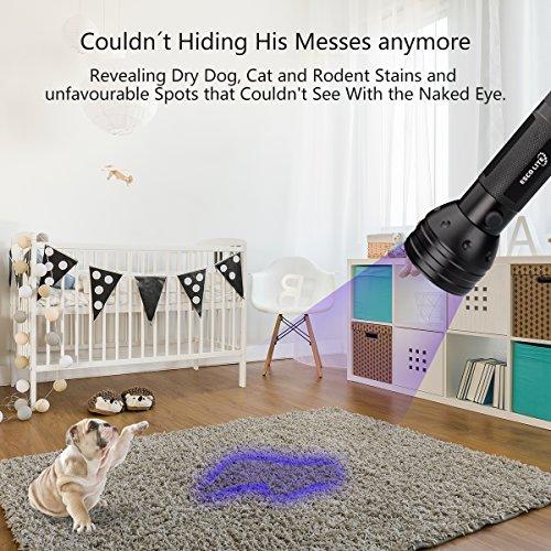 Large Product Image of Escolite UV Flashlight Black Light, 51 LED 395 nM Ultraviolet Blacklight Detector for Dog Urine, Pet Stains and Bed Bug