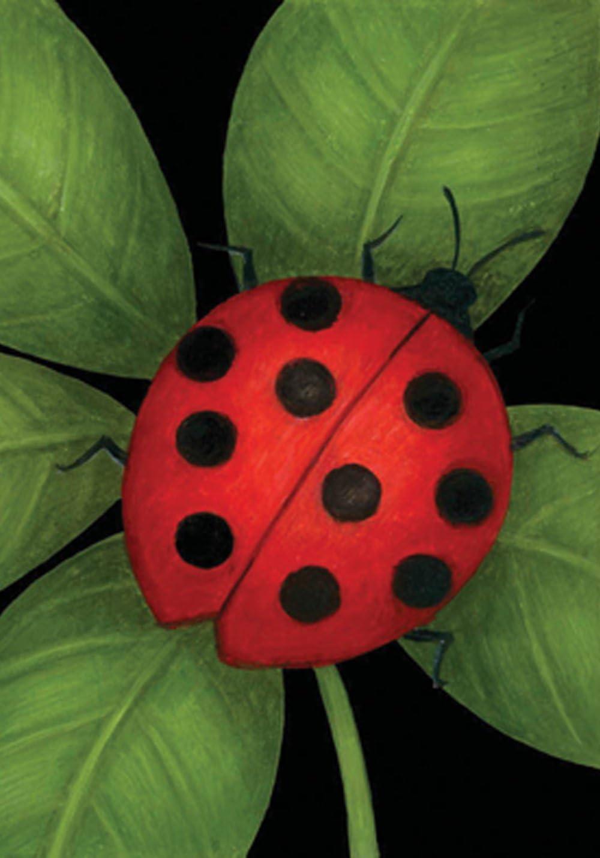 "Toland Home Garden 118234 Ladybug 12.5 x 18 Inch Decorative, Garden Flag (12.5"" x 18"")"