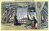 Navajo Rug Weavers in a Summer