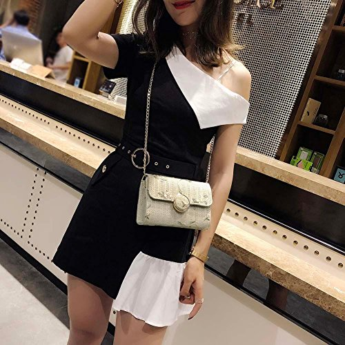 Hasp Bag Shoulder Widewing Flap Ivory Elegant Messenger Mini Bags Chain Straw Women Print SSTBZ8