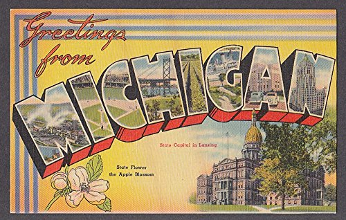 Greetings from MICHIGAN large letter postcard 1940s Apple Blossom