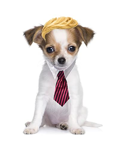 Yizepet Wigs for Dogs Trump Dog Costume Pack of Dog Wig and Tie (Red Black  sc 1 st  Amazon.com & Amazon.com : Yizepet Wigs for Dogs Trump Dog Costume Pack of Dog Wig ...
