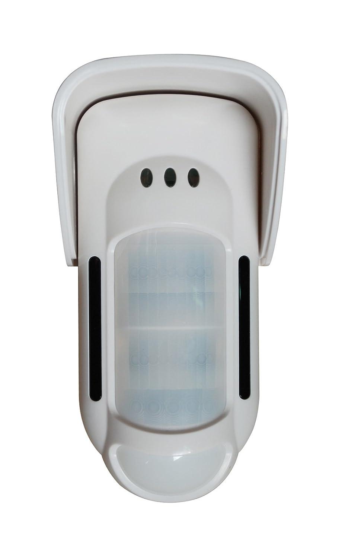 AtlanticS Detector al aire libre FT-89R bi-volumétrica 12 V, blanco: Amazon.es: Bricolaje y herramientas