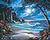 Dimensions Needlecrafts PaintWorks Paint By Number Kit, Moonlit Paradise