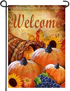Anley Garden Flag Pumpkin in Cornucopia - Decorative Autumn Welcome Garden Flags - Double Sided & Weather Resistant & Double Stitched - 18 x 12.5 Inch