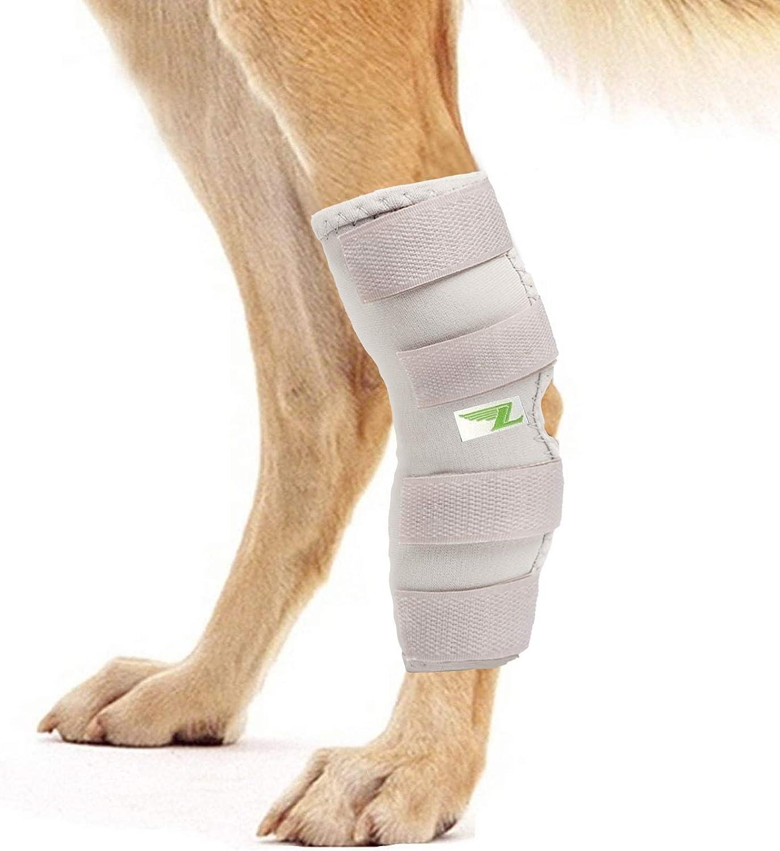 RockPet Órtesis Curadora Articulación Pata Trasera de Perro Envoltura Canina de Corvejón (XL, Gris)