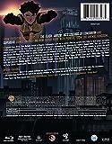 Vixen MFV (BD) [Blu-ray]