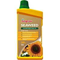 Amgrow 60221 Seaweed Liquid Concentrate