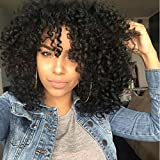 #5: RUISENNA Afro Curly Hair Wigs for Black Woman Short Kinky Hair 100% Heat Resistant Fiber Synthetic Wig 16