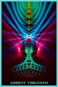 Studio B Ambient Vibrations Psychedelic Trippy Art Cool Wall Decor Art Print Poster 24x36