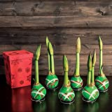 Jackson & Perkins Gloss Green Pattern Waxed Amaryllis - Set of 6