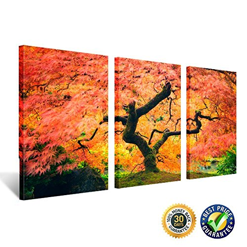 nel Landscape Art Red Maple Tree Japanese Garden Giclee Canvas Prints Modern Painting Nature Autumn Fall Scene Pictures for Home Decoration Ready to Hang 16x24inchx3pcs ()