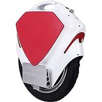 Osdrich - T2 - Monocycle électrique gyroscopique - Moteur 500W - Pack complet