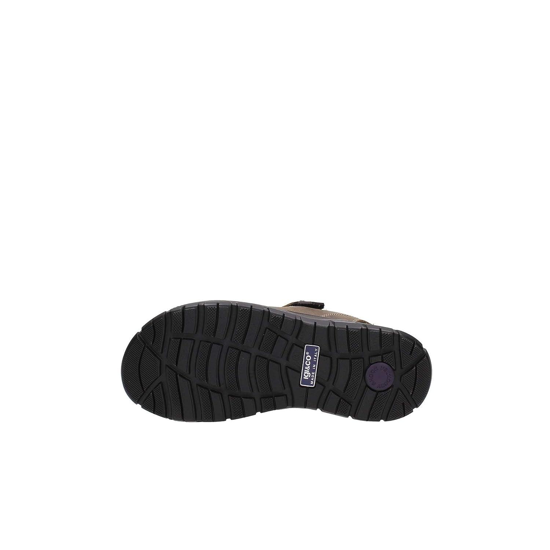 IGI&Co 7732200 Sandalen Mann Mud Klar Klar Mud 406b39