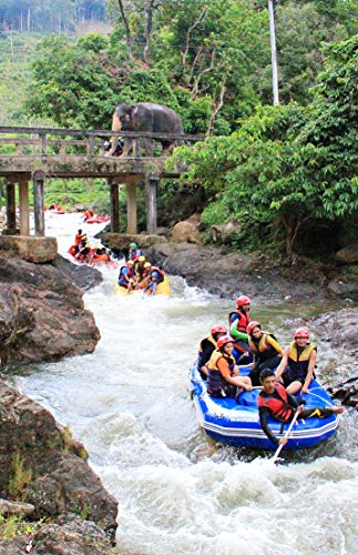 Whitewater Rafting Tours - Photo book Rafting Phang Nga : Photo book Rafting in Thailand enjoy eco-tours and outdoor adventure activities such as elephant trekking, bamboo rafting and white water rafting (Amazing Thailand 1)