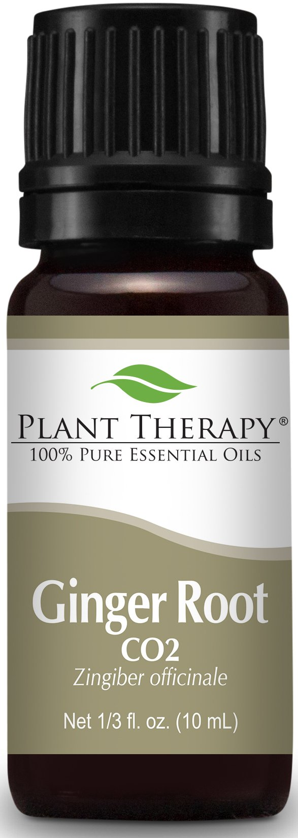 Plant Therapy Ginger Root CO2 Extract. 100% Pure, Undiluted, Therapeutic Grade. 10 ml (1/3 oz).
