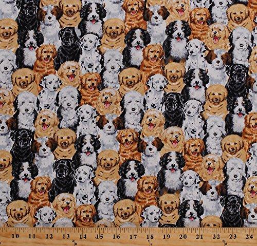 Cotton Puppies Cute Puppy Dogs Breeds Pets Animals Dalmatians Golden Retrievers Labradors Canine Cotton Fabric Print by the Yard (KIDZ-C1472)