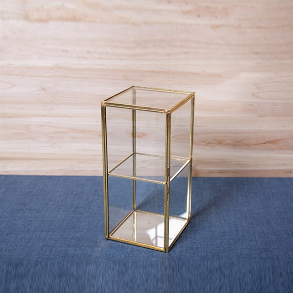 jinxin Premium Quality Glass Terrarium Cube with a Cut-Off Edge Perfect for Moss and Plants or Decorations