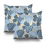 soopat Decorative Pillow Cover Pack Of 2, 20''X20'' Two Sides Printed Cliff Hanger Hawaiian Square Decorative Throw Pillow Cases Decorative Home Decor Indoor/Outdoor Nice Gift Kitchen Garden Sofa B
