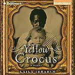 Yellow Crocus | Laila Ibrahim