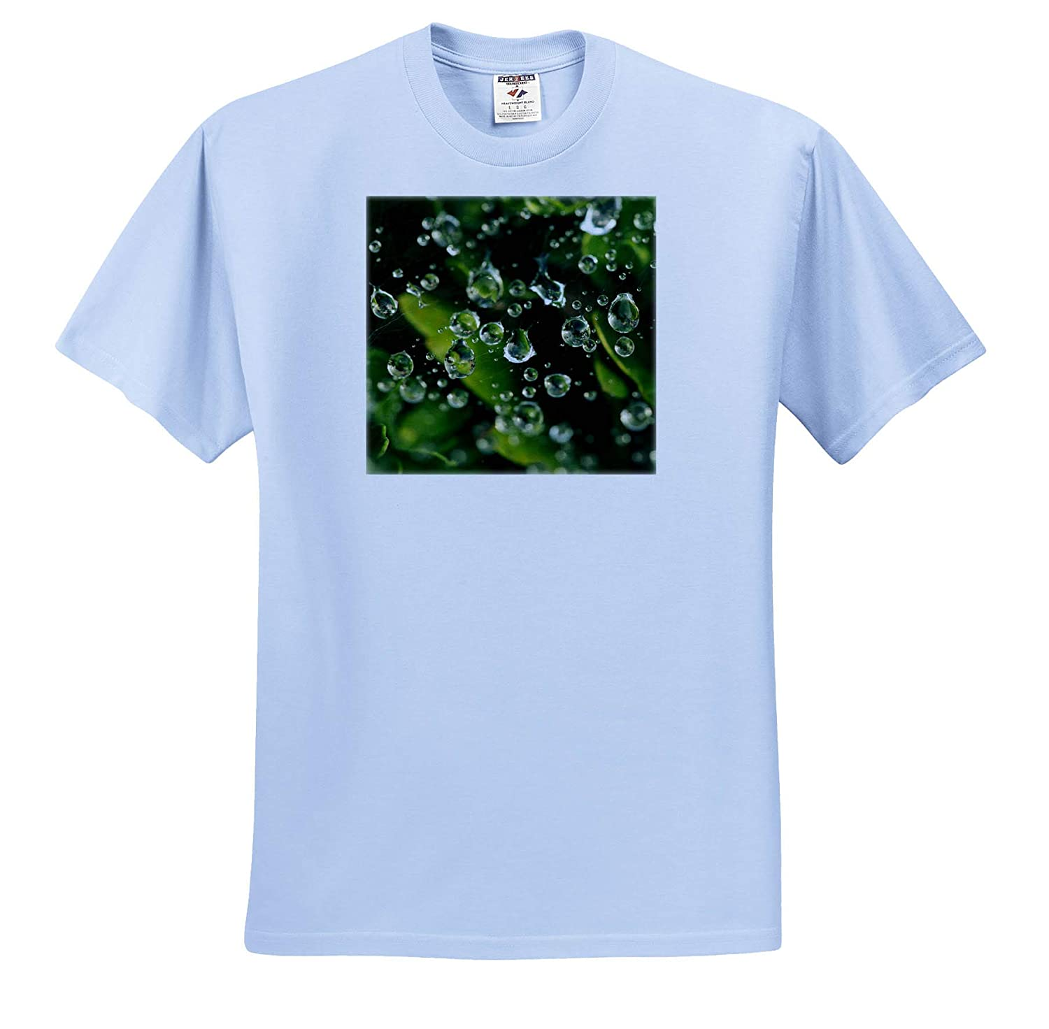 ts/_319065 - Adult T-Shirt XL 3dRose Stamp City Macro Photograph of Raindrops on a Spiderweb Over Green Leaves Nature