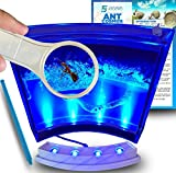 Ant Farm W/ LED Light. Enjoy A Magnificent Habitat. Great For Kids & Adults. Evviva Ant Ecosystem W/ Enhanced Blue Gel. Great Educational & Learning Science Kit. Live Harvester Ants Not Included.