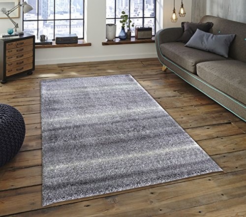 Adgo Vernazza Collection Modern Contemporary Jute Backed Shag Shaggy Area Rugs Tall Pile Height Well Spaced Soft and Fluffy Indoor Floor Rug (5′ x 7′, A104A – Grey White)