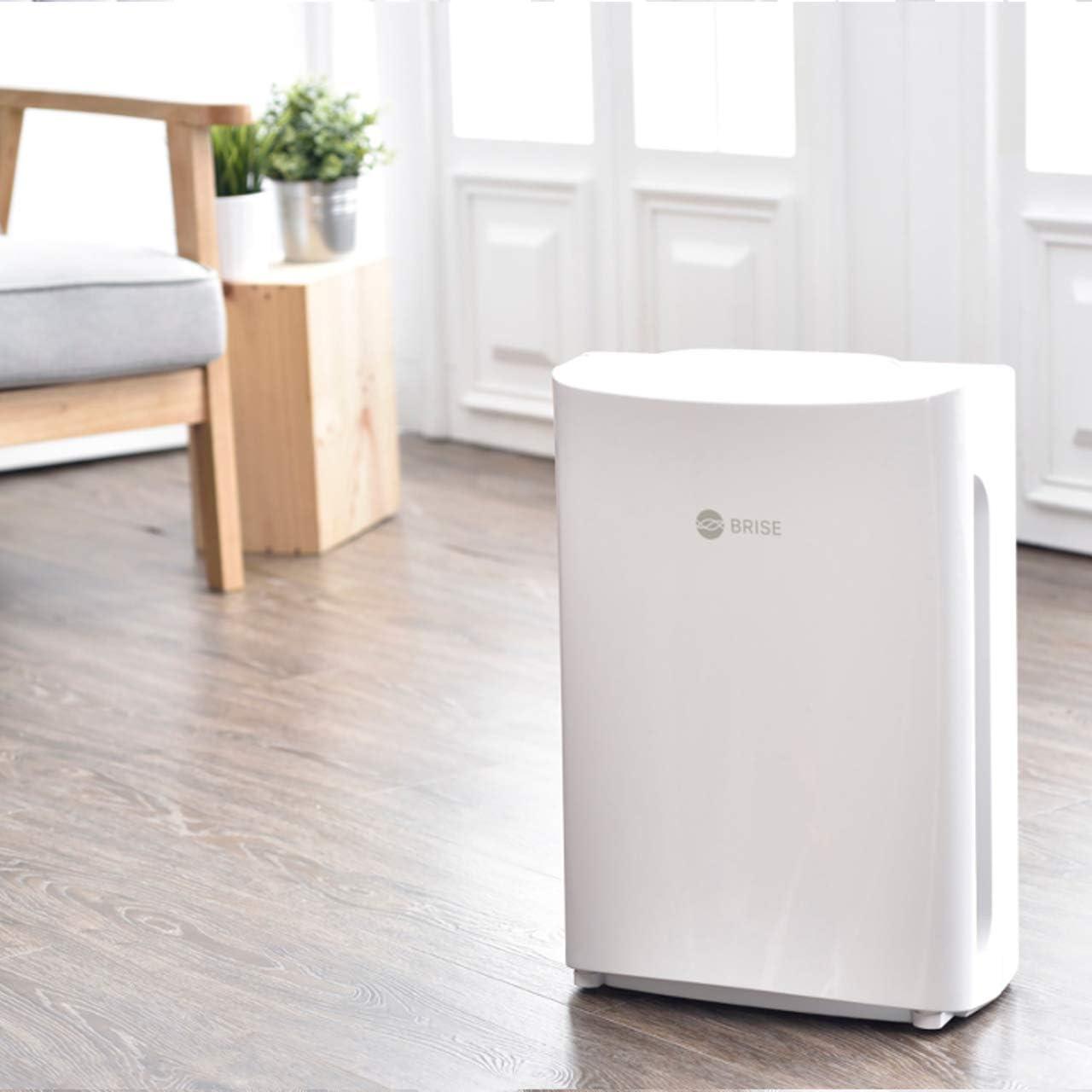 Purificador de aire Brise es un compacto Natural purificador de ...