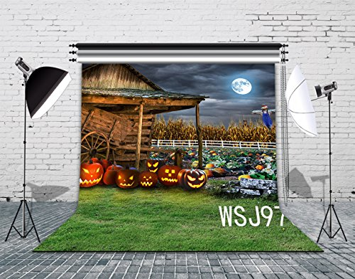 LB 8x8ft The Field Of The Halloween Vinyl Photography Backdrop Background Customized Photo Background Studio Prop (Halloween Decorations Rentals)