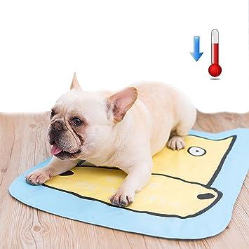 DIY casa Mascota Perro Gato Refrigeración Pad Cama Verano Colchón Alivio del Calor (Cuevas): Amazon.es: Productos para mascotas
