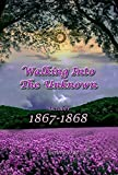 #7: Walking Into The Unknown (# 10 in the Bregdan Chronicles Historical Fiction Romance Series)
