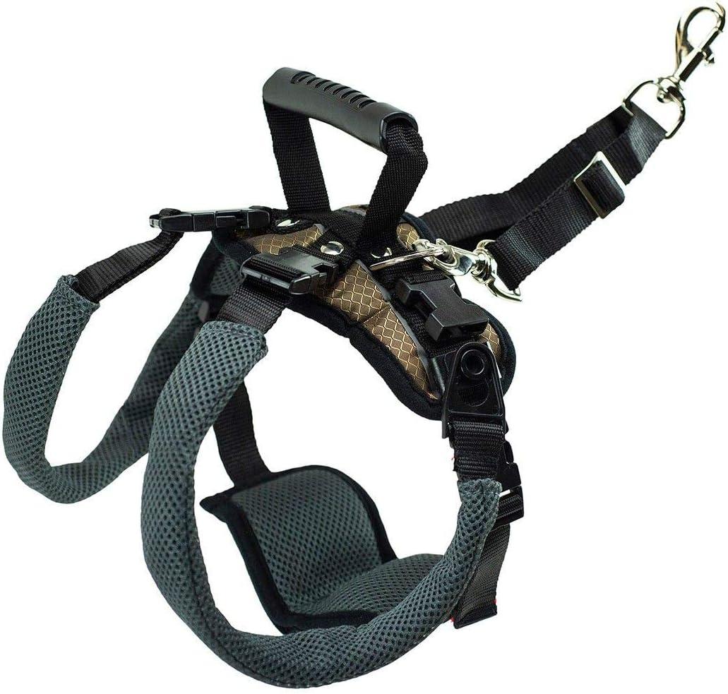 PetSafe Arnés de soporte trasero CareLift - Elevación con un asa y una correa para el hombro - Para perros discapacitados o ancianos - Material transpirable y cómodo - Ajuste fácil - Perro grande