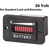 Amazon Com Pro12 24frc 12 Or 24 Volt Battery Indicator