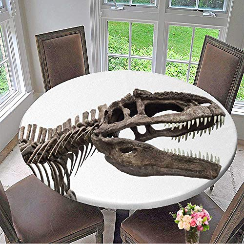 Mikihome Round Premium Tablecloth Dinosaur Skeleton,Tyrannosaurus for sale  Delivered anywhere in Canada
