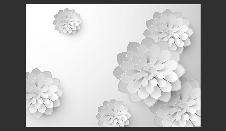 Murando - Fototapete 400x280 cm cm cm - Vlies Tapete - Moderne Wanddeko - Design Tapete - Wandtapete - Wand Dekoration - Blumen 3D weiß b-B-0076-a-a e4a099