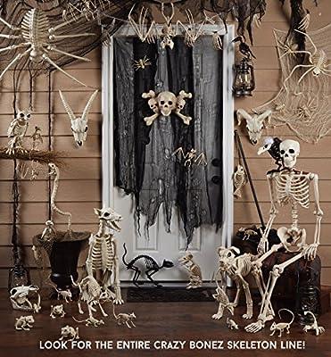 Crazy Bonez Skeleton Cat - Lil' Kitty Bonez by Seasons USA, Inc.