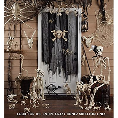 Crazy Bonez Skeleton Cat - Lil' Kitty Bonez: Toys & Games