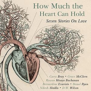 How Much the Heart Can Hold Audiobook