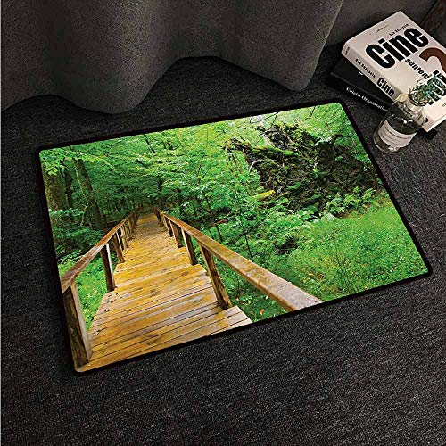 HCCJLCKS Thin Door mat Forest Wood Trail in Fresh Forest Jungle After The Rain Tropical Environment Eco Adventure Easy to Clean Carpet W24 xL35 Brown -