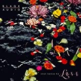 61pK5zn9gBL. SL160  - Blaqk Audio - Only Things We Love (Album Review)