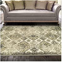 Superior Mayfair Collection Area Rug, 8mm Pile Height with Jute Backing, Vintage Distressed Pattern, Fashionable Woven Rugs - 2 x 3, Ivory
