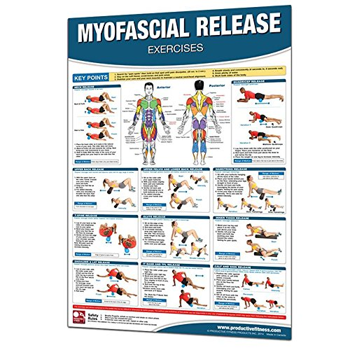 Productive Fitness Myofascial Release Exercises product image